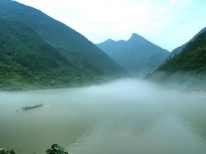 Shennong-Stream-300x225